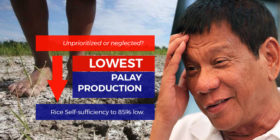 pilipinas-rocks-rice self sufficiency to low